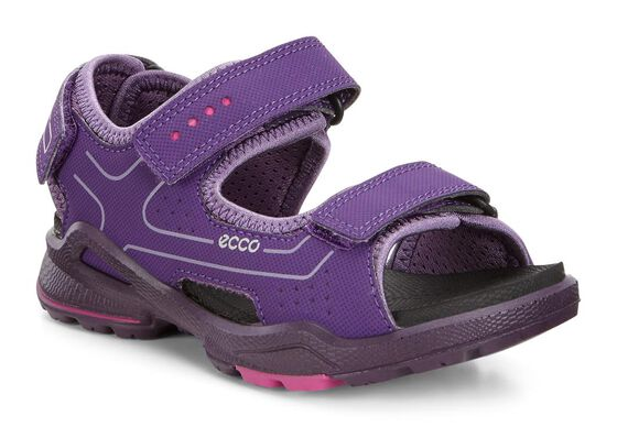 ECCO Kids Biom Sandal (IMPERIAL PURPLE/GRAPE)