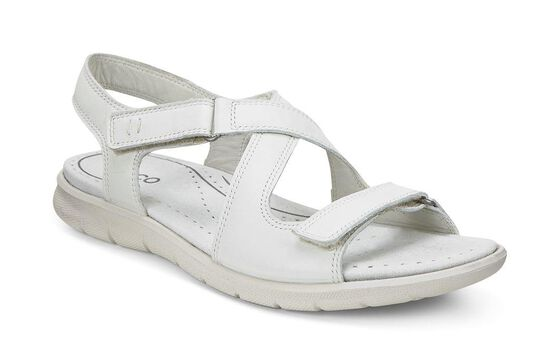 ECCO Babett Sandal (SHADOW WHITE)
