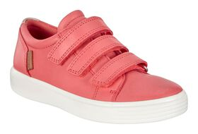 SPICED CORAL/ROSE DUST (50833)