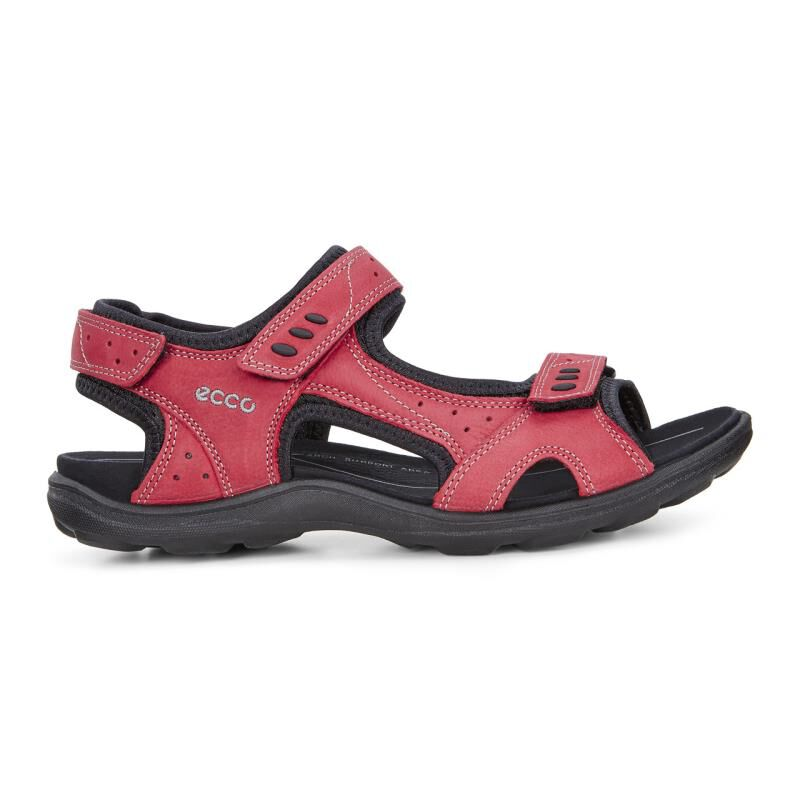... ECCO Womens Kana SandalECCO Womens Kana Sandal CHILI RED (02466) ...