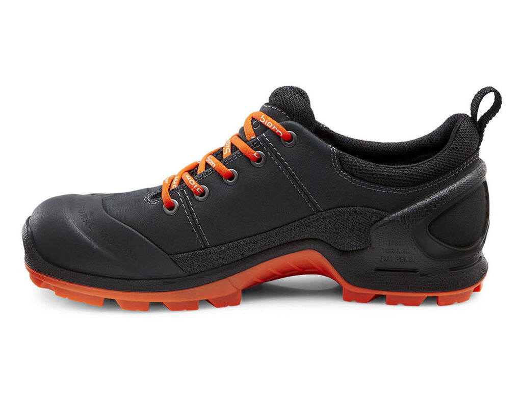 ECCO Men's Biom Terrain Lo   Sport Shoes