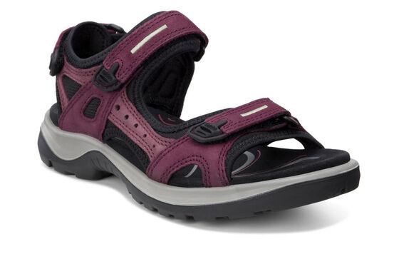 ECCO Womens Offroad Sandal (MORILLO/PORT/BLACK)