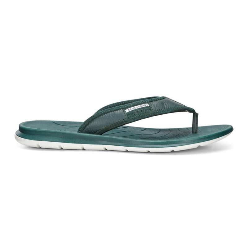 ... ECCO Mens Intrinsic Toffel ThongECCO Mens Intrinsic Toffel Thong  DIOPTASE (01029) ...